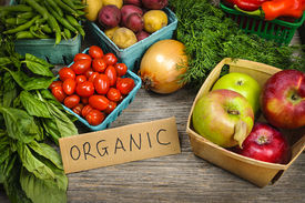 picture of farmer  - Fresh organic farmers market fruit and vegetable on display - JPG