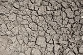 stock photo of drought  - Photo of cracked earth - JPG