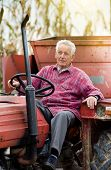 foto of tractor  - Old man driving tractor on corn field during harvest - JPG