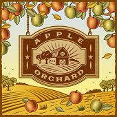 picture of barn house  - Apple Orchard - JPG