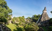 foto of mayan  - Panoramic view of Mayan historic building at Tikal Jungle - JPG