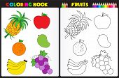 picture of sketch book  - Nature coloring book page for preschool kids with colorful fruits and sketches to color - JPG