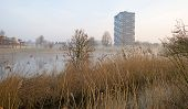 stock photo of highrises  - Highrise along the shore of a canal at sunrise - JPG