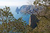 picture of sevastopol  - Beautiful landscape  - JPG