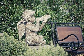 foto of cupid  - little cupid angel with spreaded wings in an irish garden - JPG