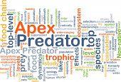 foto of predator  - Background concept wordcloud illustration of apex predator - JPG