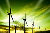 foto of wind-farm  - Wind turbines farm at sunset - JPG