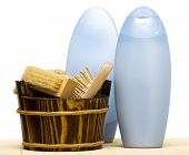 image of washtub  - washtub with brush and shampoo - JPG