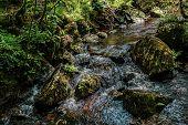 A Stream Flowing In Dartmoor National Park, Devon, United Kingdom poster