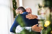 A Senior Father With A Santa Hat And Adult Son Standing By The Window, Hugging. poster