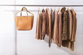 Womens brown blouses with, leopard pattern coat, jacket, sweater,leather bag,scarf  on hangers  poster