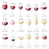 Wine Glass Vector Winery Alcohol Drink And Red Beverage Wineglass In Bar Restaurant Illustration Set poster