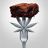 Cannabis Brownie Edible Or Marijuana Edibles Snack With A Leaf Representing Pot Baked Good Herbal Fo poster