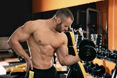 Strong Young Man Lifting Dumbbell In Gym poster