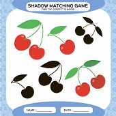 Shadow Matching Game. Find The Correct Shadows. Activity Page For Kids. Kindergarten Worksheets By M poster