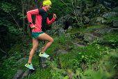 Trail Running Girl On Stones Steps In Green Forest. Endurance Sport Training. Female Trail Runner Cr poster