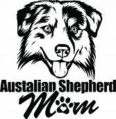 Animal Dog Australian Shepherd 6T6 Mom.eps poster