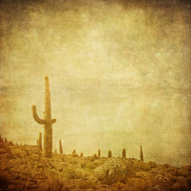 picture of wild west  - grunge background with wild wild west landscape - JPG