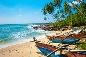 Untouched tropical beach with palms and fishing boats in Sri-Lanka