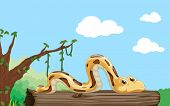 stock photo of hollow log  - Illustration of a snake on a log - JPG