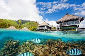 stock photo of french polynesia  - Beautiful above and underwater landscape of Moorea island in French Polynesia - JPG