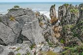 New Zealand Coastal Rocks