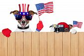 picture of snoopy  - two dogs watching 4th of July parade - JPG