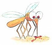 picture of gnats  - funny illustration of a mosquito  - JPG