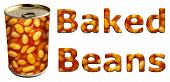 pic of phaseolus  - Baked beans can along with textured words on an isolated white background with a clipping path - JPG