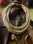 image of saddle-horse  - ROPE FOR COW BOY RESTING ON THE SADDLE OF A HORSE - JPG