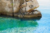 picture of unnatural  - fish in stone with an open mouth full of fangs swimming in the sea - JPG