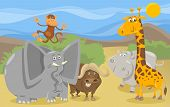 Постер, плакат: Safari Animals Group Cartoon Illustration