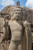 image of rock carving  - Avukana standing Buddha statue Sri Lanka - JPG