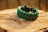 stock photo of paracord  - Bracelet paracord on a tree trunk in autumn forest no people - JPG