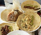 image of cricket insect  - Fried insect and worm tacos and rabbit mixiote from Mexican cuisine - JPG