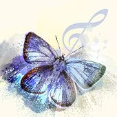 foto of butterfly  - Fashion Butterfly Background With Treble Clef And Butterfly - JPG