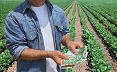 foto of cultivation  - Farmer holding Euro banknote with green cultivated soy field in background - JPG