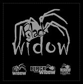 image of black widow spider  - Black widow logo set - JPG