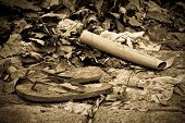 picture of thong  - Close up sepia tone image of discarded thongs and refuse amongst leaves - JPG