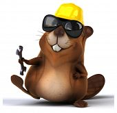stock photo of beaver  - Fun beaver - JPG
