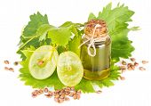 picture of vines  - Sliced grapes grapeseed oil and vine isolated on white - JPG