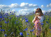 Постер, плакат: Маленькая девочка в поле Синие васильки