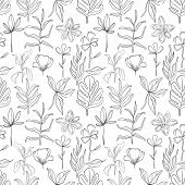 Hand Drawn Pattern Sketch Style Wild Flowers . Line Nature Style,drawing Flora,hand Drawn Botany. poster