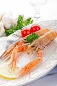picture of norway lobster  - norway lobster with tomatoes and lemon on dish - JPG