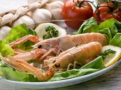 pic of norway lobster  - norway lobster with salad on dish - JPG
