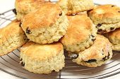 Freshly-baked fruit scones - similar to American