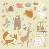 stock photo of owls  - Vector set of cute wild animals in the forest - JPG