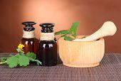picture of celandine  - Blooming Celandine with medicine bottles on table on brown background - JPG