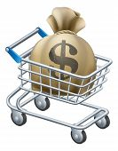 Money Shopping Cart Trolley