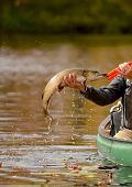 image of canoe boat man  - man catching a pike fish while fishing in a canoe